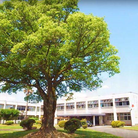 川上哲治生誕100年|特集|球磨中央高等学校